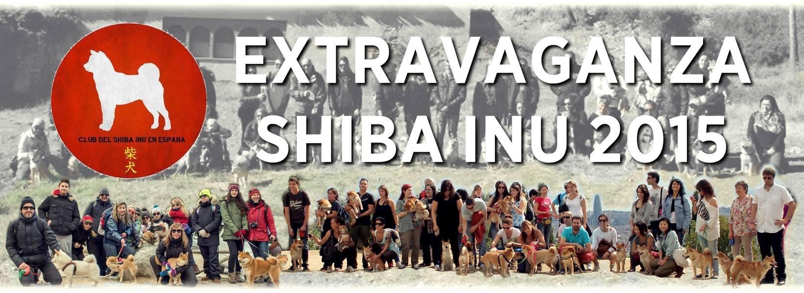18/10/15 – Extravaganza Shiba Inu 2105