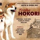 10/04/15 – II Trofeo Hokori
